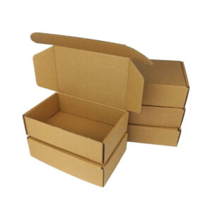 Corrugated Mailer Box Packaging